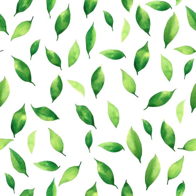 Aquarel schilderij kleurrijke tropische bladeren naadloze patroon Premium Foto