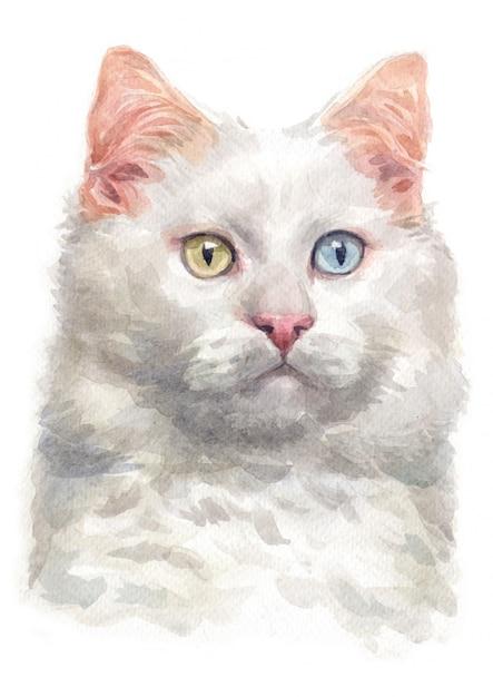 Aquarel schilderij van turkse van cat Premium Foto
