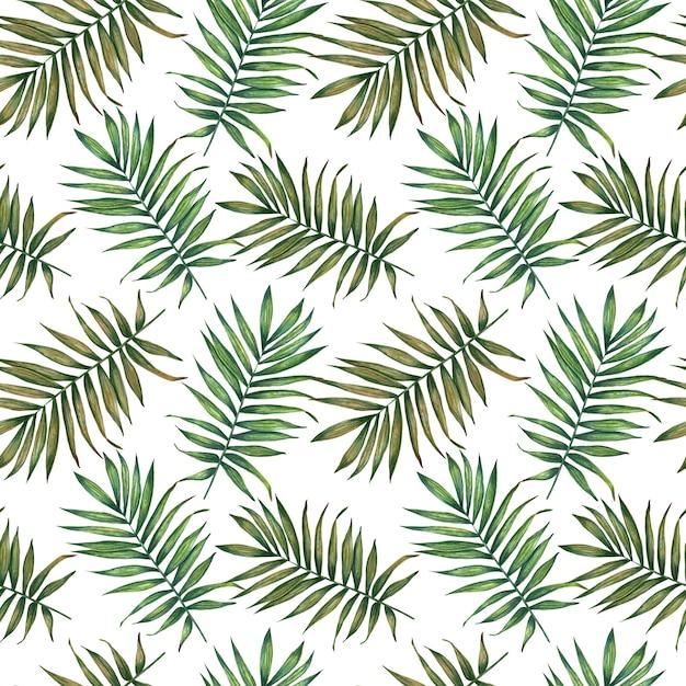 Aquarel tropische palm verlaat naadloze patroon. Premium Foto