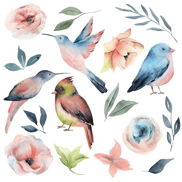 Aquarel voorjaarsvogels en bloemen Premium Foto