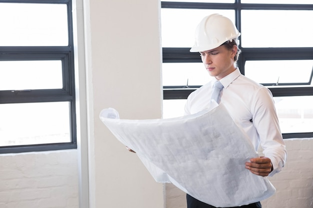 Architect die blauwdruk in bureau bekijkt Premium Foto