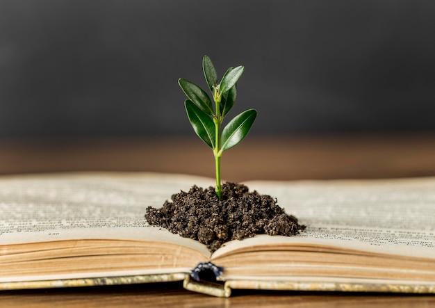 Assortiment met boek en plant in de grond Premium Foto