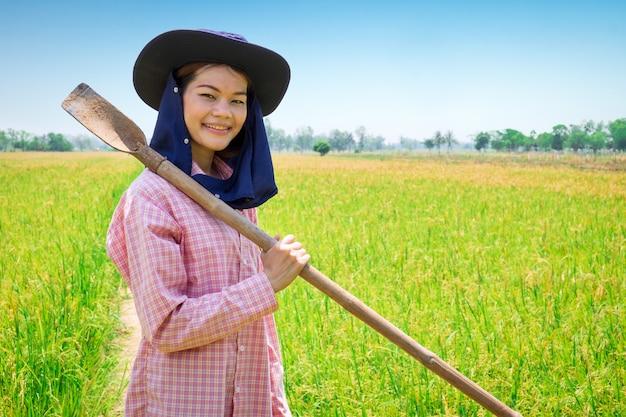 Aziatische jonge landbouwers vrouwelijke gelukkige glimlach en holdingshulpmiddel in een groen padieveld Premium Foto