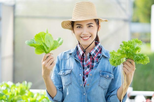 Aziatische landbouwer bij het hydroponic landbouwbedrijf van de groentensalade. Premium Foto