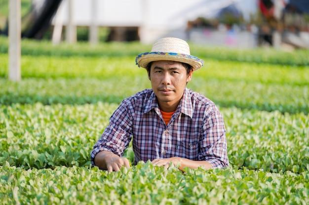 Aziatische landbouwer die in hoed jonge zaailingen in zijn landbouwbedrijf in de moestuin controleren Premium Foto