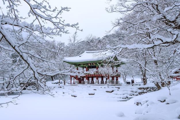 Baekyangsa tempel en vallende sneeuw, naejangsan berg in de winter met sneeuw, beroemde berg in korea. winterlandschap Gratis Foto