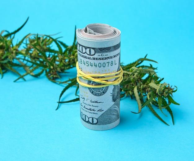Bankbiljetten van amerikaanse dollars en groen blad van hennep Premium Foto