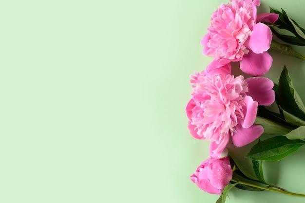 Banner van roze pioen op groene achtergrond. bloemenpatroon. Premium Foto