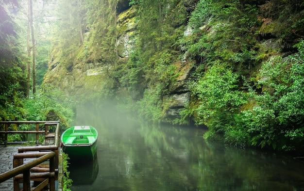 Bekijk kloven in tsjechisch zwitserland aan de rivier de kamenice, district decin, bohemen, tsjechië. edmund's gorge, boheems zwitserland. Premium Foto