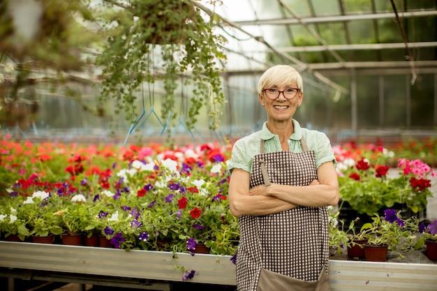 Bekijk knappe hogere vrouw die met de lentebloemen werkt in greengarden Premium Foto