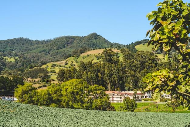 Berg, blauwe lucht in cartago costa rica Premium Foto