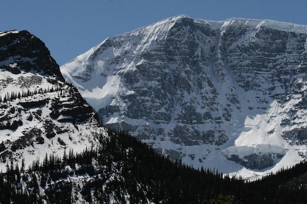 Bergen bedekt met sneeuw in de nationale parken banff en jasper Gratis Foto