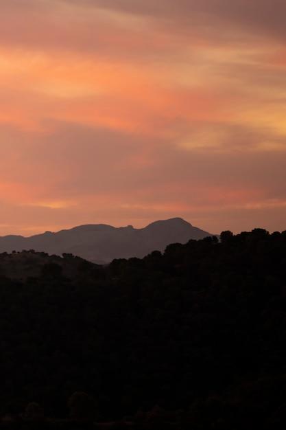 Bergen en bos met prachtige zon Gratis Foto