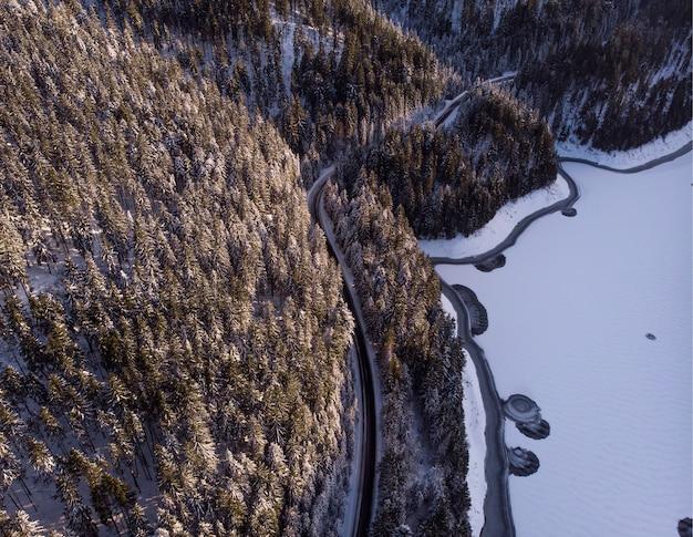 Bergen en bossen bedekt met sneeuw in transsylvanië, roemenië Gratis Foto