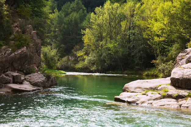 Bergenrivier met rotsachtige rivieroever. pyreneeën Gratis Foto