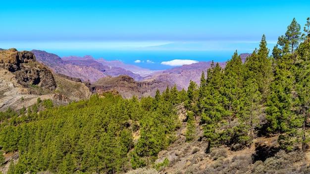 Berglandschap op gran canaria, woestijnlandschap van valleien en bergen die eindigen in de zee. europa. Premium Foto