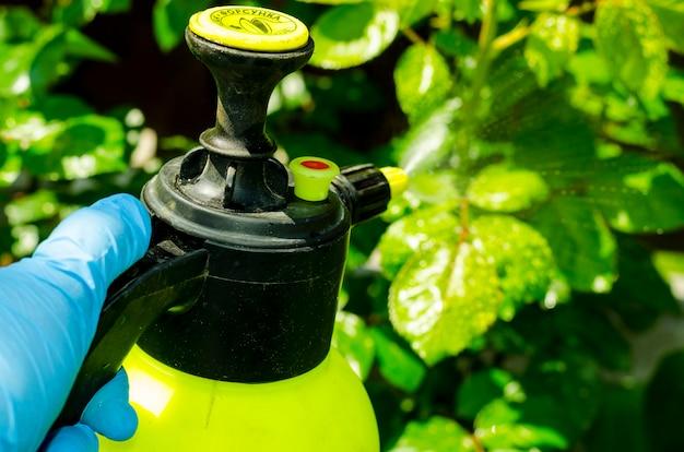 Bestrijdingsmiddelenbehandeling van tuinbloemen, bomen en planten Premium Foto