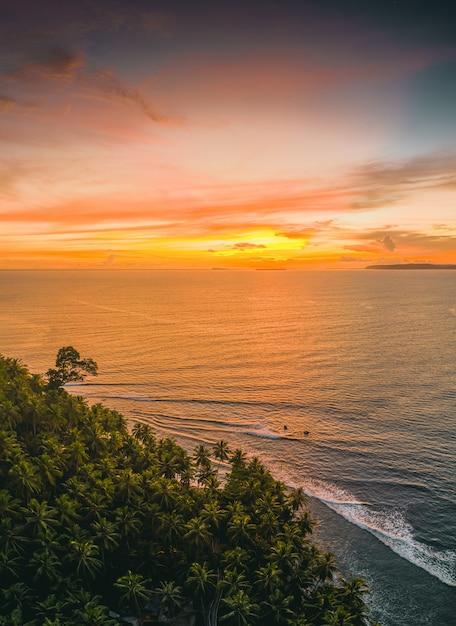 Betoverend uitzicht op de kalme oceaan en de bomen aan de kust tijdens zonsondergang in indonesië Gratis Foto
