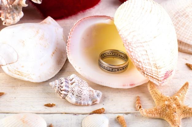 Betrokken ring zeeschelp Premium Foto