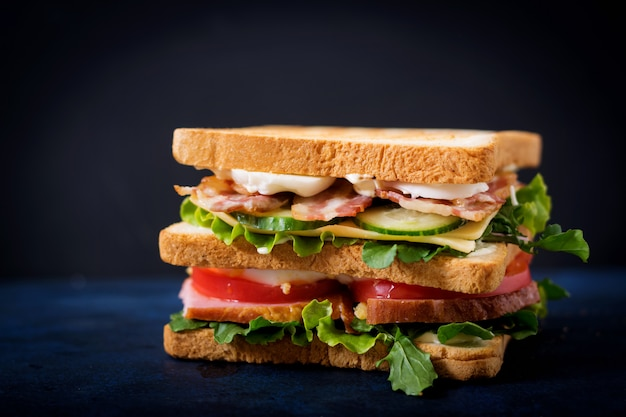 Big club-sandwich met ham, bacon, tomaat, komkommer, kaas, eieren en kruiden op donkere tafel Premium Foto