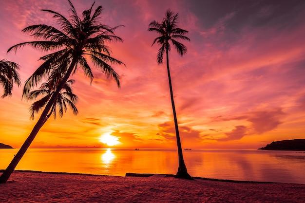 Bij zonsondergang op het tropische strand en de zee met coconut palmboom Gratis Foto