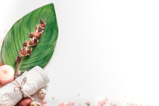 Biologische kuuroordproducten op witte achtergrond Gratis Foto