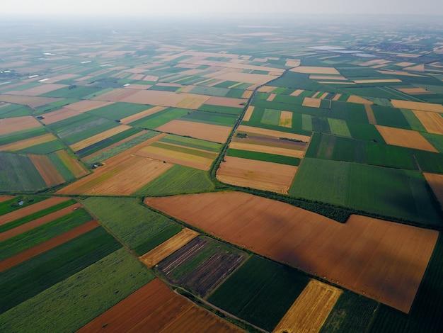 Bird's eyes luchtfoto foto van vliegende drone van velden voor de oogst in de zomer op het platteland. Premium Foto