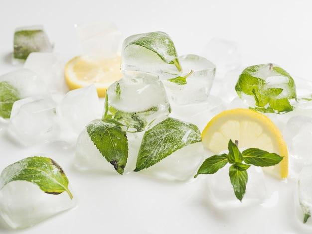 Bladeren in blokjes ijs met citroenen Gratis Foto