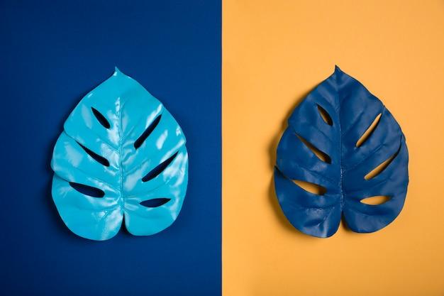 Blauwe bladeren op blauwe en oranje achtergrond Gratis Foto