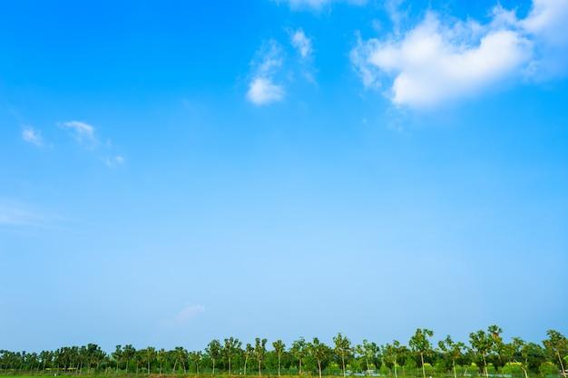 Blauwe hemel achtergrondtextuur met witte wolken. Premium Foto