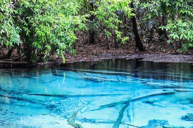 Blauwe pool krabi-provincie één verbazend in zuiden van de bestemming van thailand. selecteer focus. Premium Foto