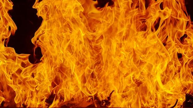 Blaze vuur vlam achtergrond en textuur Premium Foto