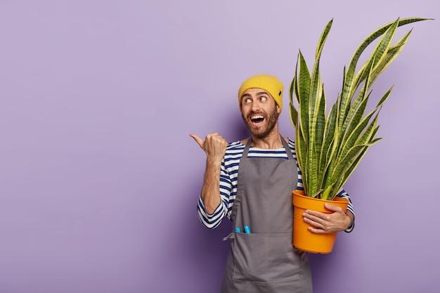 Blij tevreden jonge man met stoppels, houdt sansevieria of slangenplant vast, geeft om kamerplant, toont richting waar hij bloem kocht, gekleed in uniform Gratis Foto