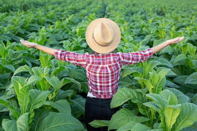 Blije jonge vrouw in een tabaksaanplanting. Gratis Foto