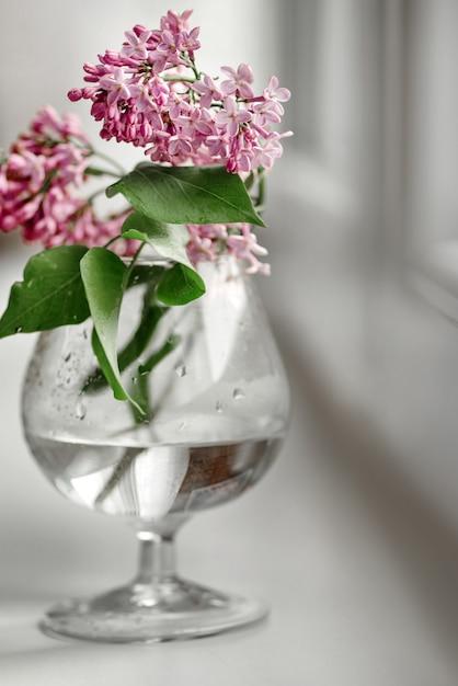 Bloeiende lila bos in wazig wijnglas op witte achtergrond Premium Foto