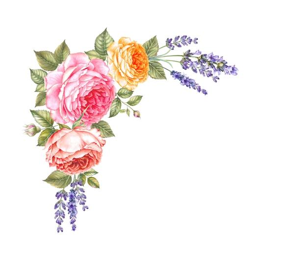 Bloeiende roos aquarel Premium Foto