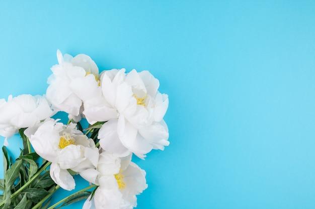 Bloeiende witte pioen bloemen Premium Foto