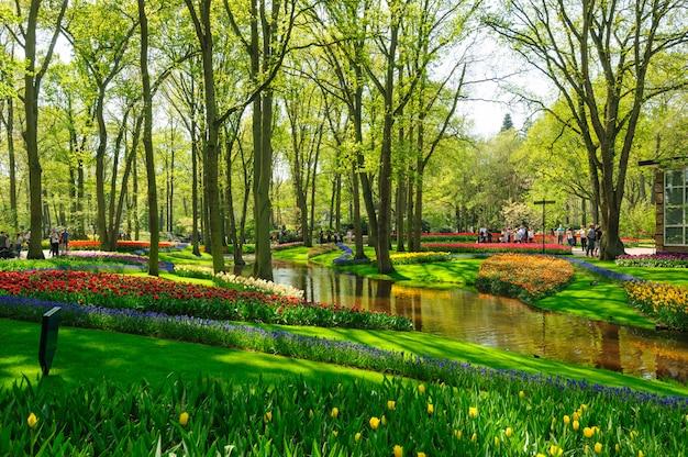 Bloembedden van keukenhof-tuinen in lisse, nederland Premium Foto
