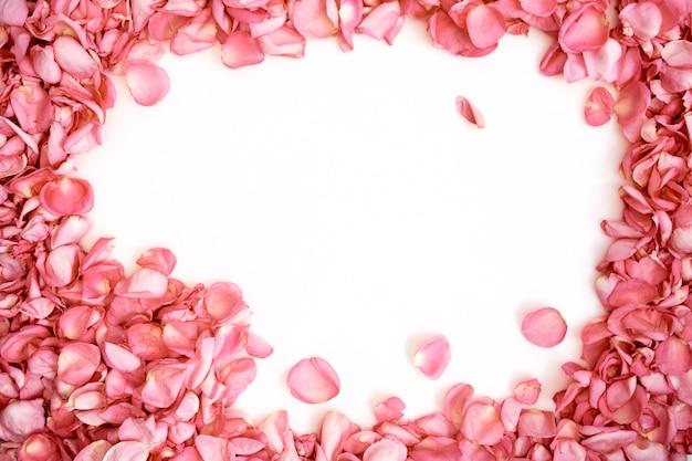 Bloemblaadjes van roze rozenframe op witte achtergrond Premium Foto
