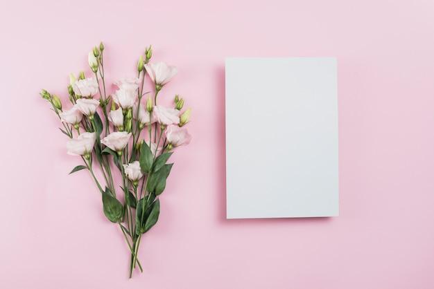 Bloemen achtergrond kopie ruimte Gratis Foto