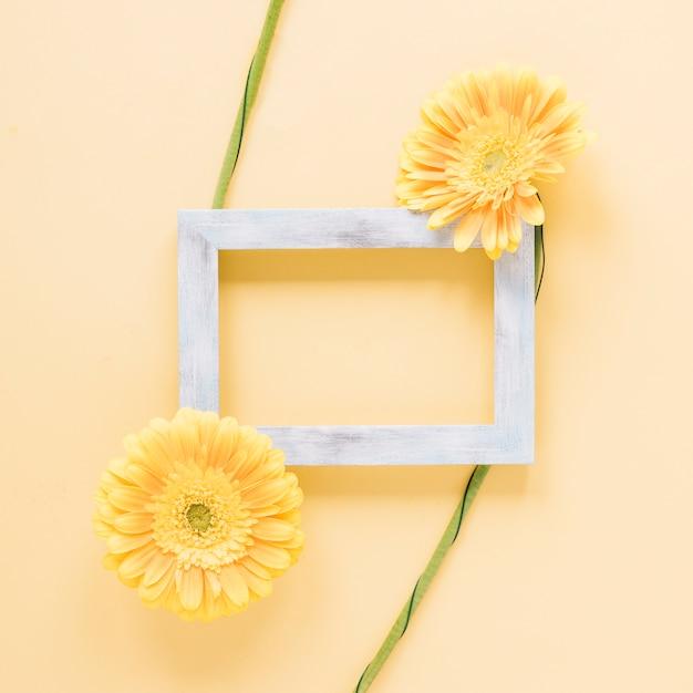 Bloemen achtergrond Gratis Foto