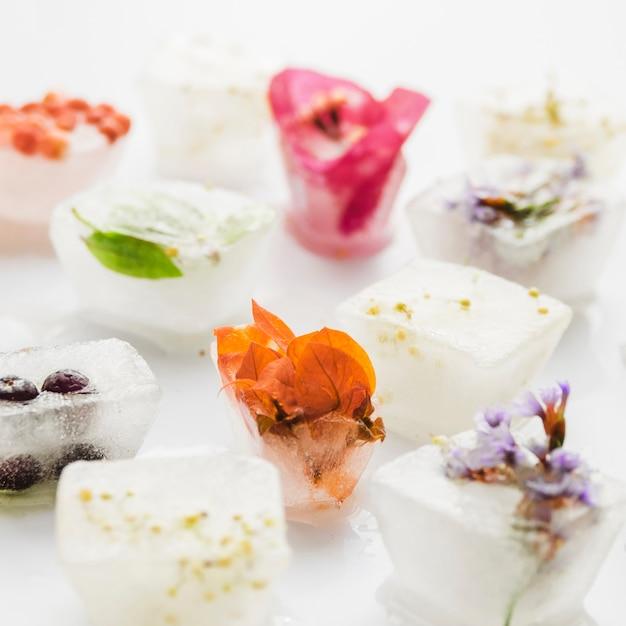 Bloemen en planten in ijsblokjes Gratis Foto