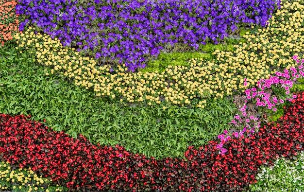 Bloemen en planten muur achtergrond Premium Foto