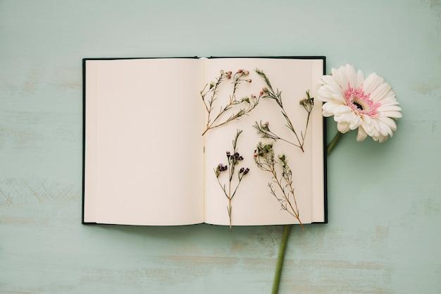 Bloemen op pagina's van een notebook Gratis Foto