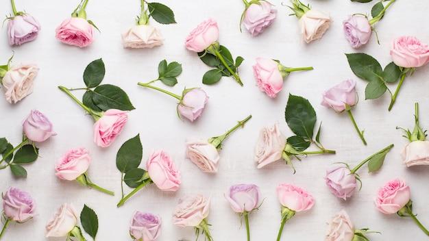 Bloemen valentijn dag samenstelling. frame gemaakt van roze roos op grijze tafel Premium Foto