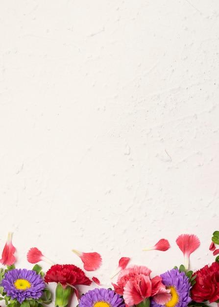 Bloemenexemplaar ruimteachtergrond met rozen en madeliefjes Gratis Foto
