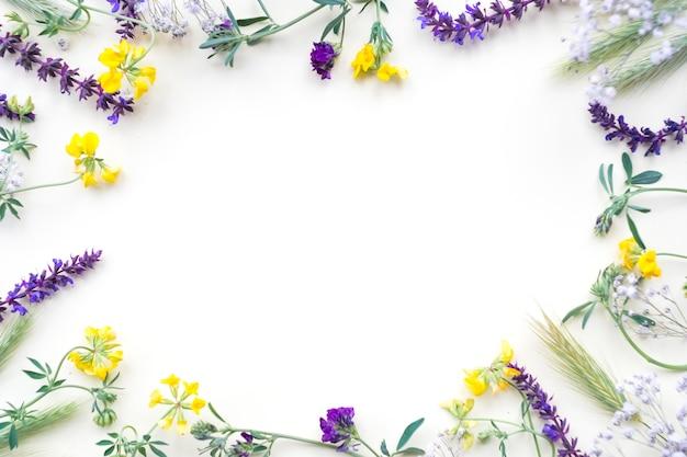 Bloemengrens op witte achtergrond wordt geïsoleerd die Gratis Foto