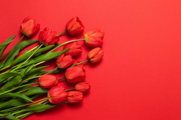 Bloemenkaderachtergrond met tulpenbloemen op rode pastelkleurachtergrond. plat leggen, bovenaanzicht. Premium Foto