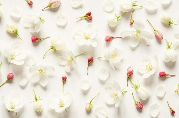 Bloemenpatroon met roze en witte bloemen op witte achtergrond Premium Foto