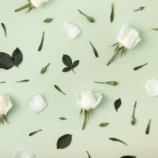 Bloemenregeling van rozen op groene achtergrond Gratis Foto